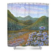 Mountains And Asters Shower Curtain