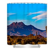 Mountains And Cactus Shower Curtain