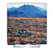 Mountains And Mesas Shower Curtain