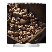 Mountains Of Mushrooms Shower Curtain