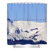 Mountaintop Geese Shower Curtain