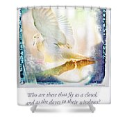 Mourning Dove About To Land On Tree Branch Shower Curtain