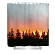Movement Of The Sky And Forest Trees Shower Curtain