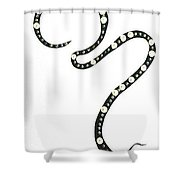 Moveonart Capture Shower Curtain