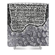 Moveonart Elements Shower Curtain