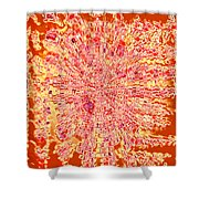 Moveonart Intense Indian Fire Chant Shower Curtain