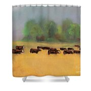 Moving On Shower Curtain