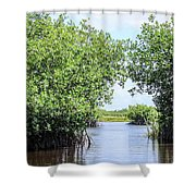 Moving The Glades Of Roatan Shower Curtain