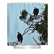 Mr. And Mrs. Bald Shower Curtain