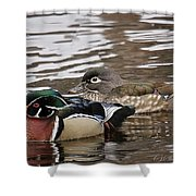 Mr. And Mrs. Wood Duck Shower Curtain