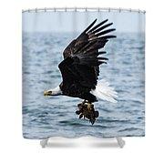 Mr. Bald Eagles Catch Shower Curtain