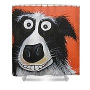 Mr Dog Shower Curtain