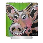 Mr Pig Shower Curtain
