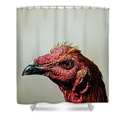 Mr. Rooster II Shower Curtain