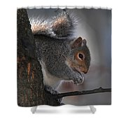 Mr S Snacking Shower Curtain