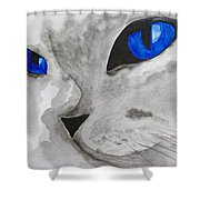 Mr Silver Shower Curtain