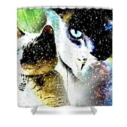 Mr. Space Kitty Shower Curtain