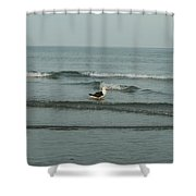 Mr. Tuxedo Shower Curtain