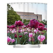 Msu Spring 21 Shower Curtain