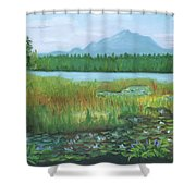 Mt Ampersand From Oseetah Lake Shower Curtain