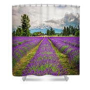 Mt. Hood And Lavender Shower Curtain