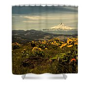 Mt. Hood And Wildflowers Shower Curtain