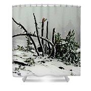 Mt Hood Snow Shower Curtain