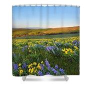 Mt. Hood Wildflower Morning Shower Curtain