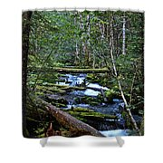 Mt Hood Wilds Shower Curtain