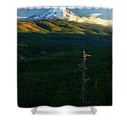 Mt Hood With Snag Shower Curtain