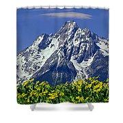 1m9224-mt. Moran  Shower Curtain