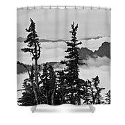 Mt Rainier National Park Shower Curtain