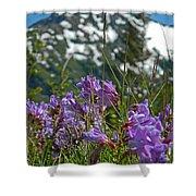 Mt. Rainier Wild Flowers Shower Curtain