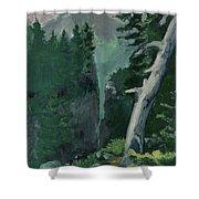 Mt Ranier Shower Curtain