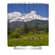 Mt Shasta With Picnic Tables Shower Curtain