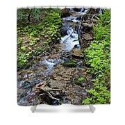 Mt. Spokane Creek 2 Shower Curtain