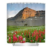 Mt Timpanogos Shower Curtain