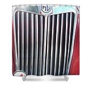 Mtg Chrome Grill Shower Curtain