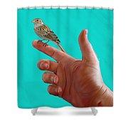 Fear Not    Matt10.31 Shower Curtain