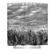 Muck City Landscape Shower Curtain