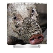Mud Face Shower Curtain