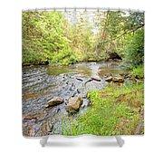 Mud Run, Pennsylvania, Pocono Mountain Stream Shower Curtain