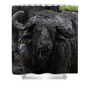 Mud Sculpture-signed Shower Curtain