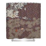 Muddy Footprints Over A Carpet Shower Curtain