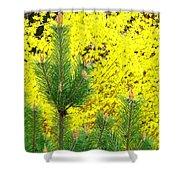 Mugo Pine And Forsythia Shower Curtain