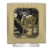 Mule Deer Fawn - Monarch Moment Shower Curtain by Crista Forest