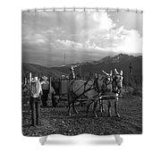 Mule Drawn Wagon Shower Curtain