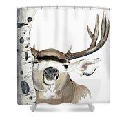 Mulie Buck And Aspen Shower Curtain