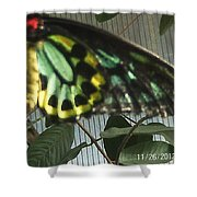 Multi-colored Butterfly Shower Curtain