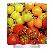 Multi Colored Tomatoes Shower Curtain